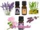 What Repels Ticks? Best 5 Tick Repellents