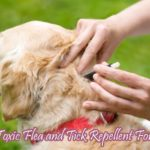 Non Toxic Flea and Tick Repellent For Dogs