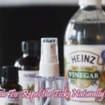 Natural Tick Repellent For Humans – Repel Ticks Naturally