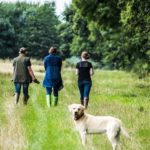 Tick Repellent Clothing To Protect You from Ticks