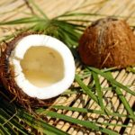 Coconut Oil, a natural way to repel ticks