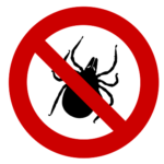 how to remove a tick from a person