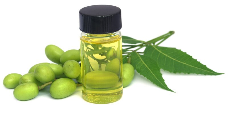 neem oil and fruit